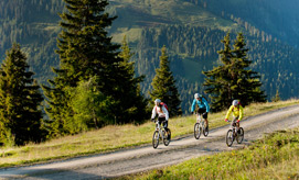 Biking in the Zillertal